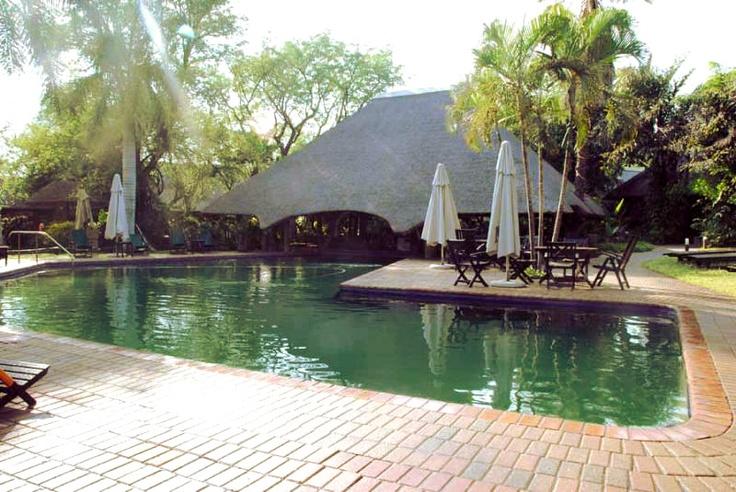 Krugerpark - Sudafrica