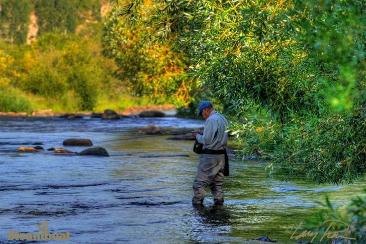 17 best images about my favorite colorado places on for Fishing colorado springs