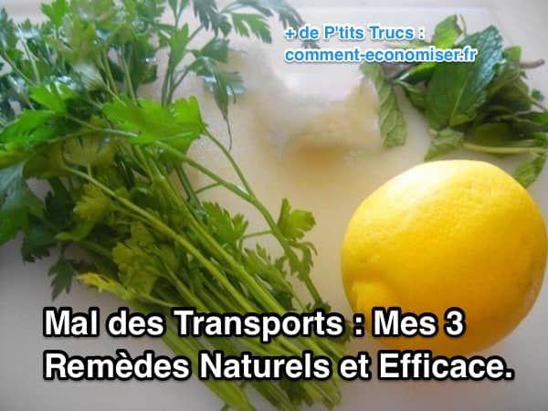 le persil, le citron et la menthe sont des remèdes naturels efficaces pour soulager le mal des transports