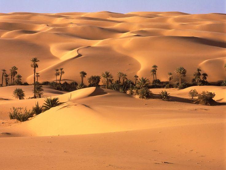 Wüsten   ---   Für mehr Bilder klicken Sie bitte auf das Foto!