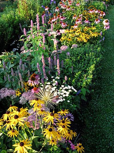 Filling Flower-Garden Gaps