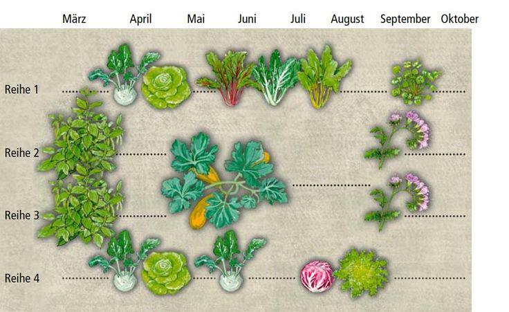 49 besten pflanztipps gardening bilder auf pinterest balkon gartenpflanzen und mischkultur. Black Bedroom Furniture Sets. Home Design Ideas