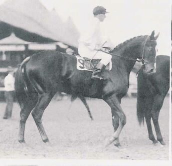 Regret.  The first filly to with the Kentucky Derby in 1915.