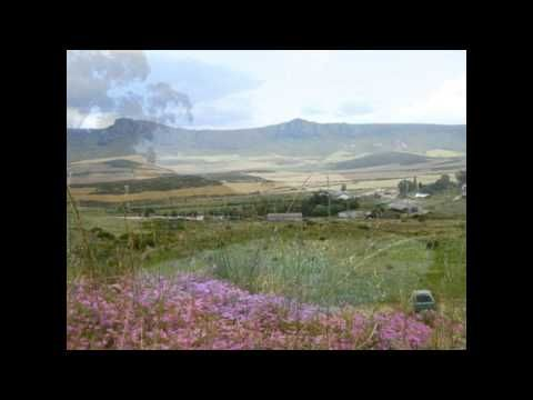 Livestock wheat and irrigation farm for sale around Piketberg Western Cape