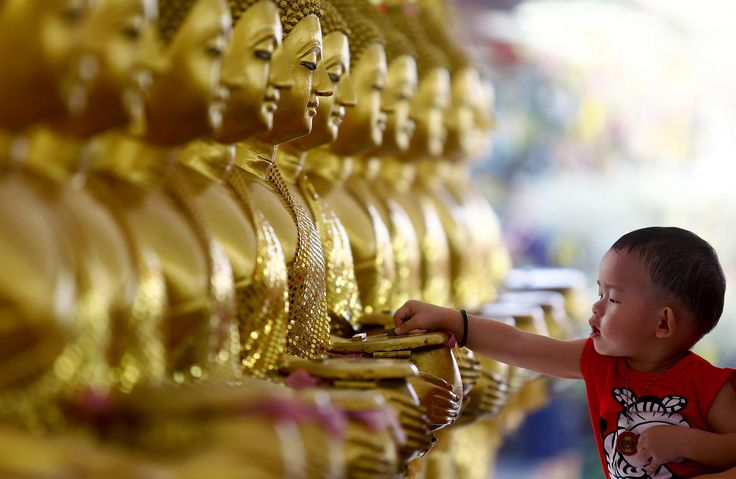 A child drops coins into golden Buddha statues as a symbol of blessings on Vesak Day at the Thai Buddhist Chetawan Temple in Petaling Jaya, near Kuala Lumpur May 13, 2014. Buddhists across the world on Tuesday celebrate holy Vesak to honour the birth, enlightenment and passing of Lord Buddha 2,550 years ago.