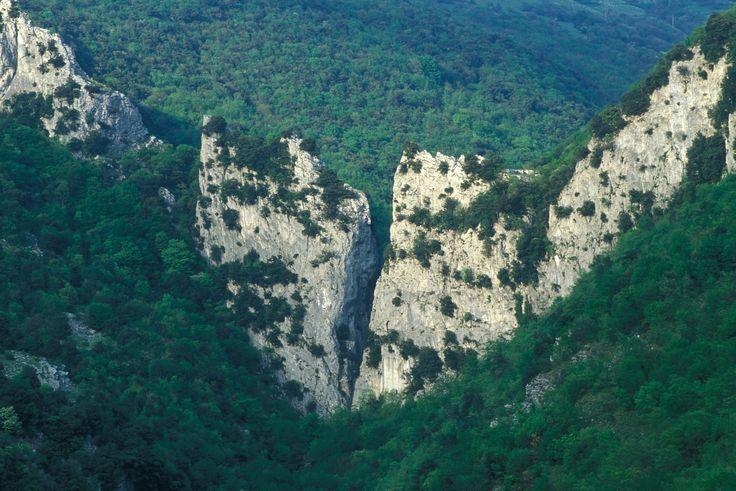 Costacciaro (PG) • Parco del Monte Cucco | Monte Cucco Park  #AltaUmbria #Umbria