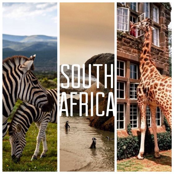 Wishful Traveling | South Africa