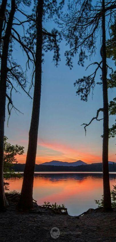 White Lake State Park - New Hampshire Amerika USA #by AmyPaz -- http://s-media-cache-ak0.pinimg.com/originals/ed/b9/3d/edb93df9765d44f25b2422652b9e4c7f.jpg