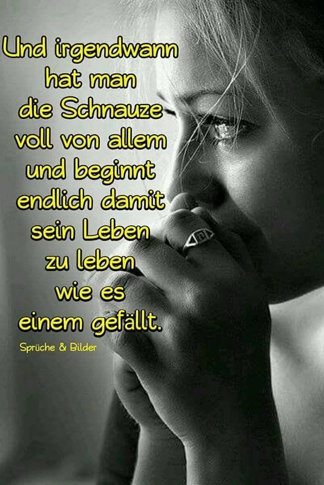 dreamies.de (7t9rudwk8lw.jpg)