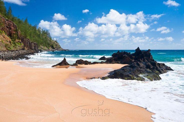 Photo of Anson Bay NF0859 - Gusha