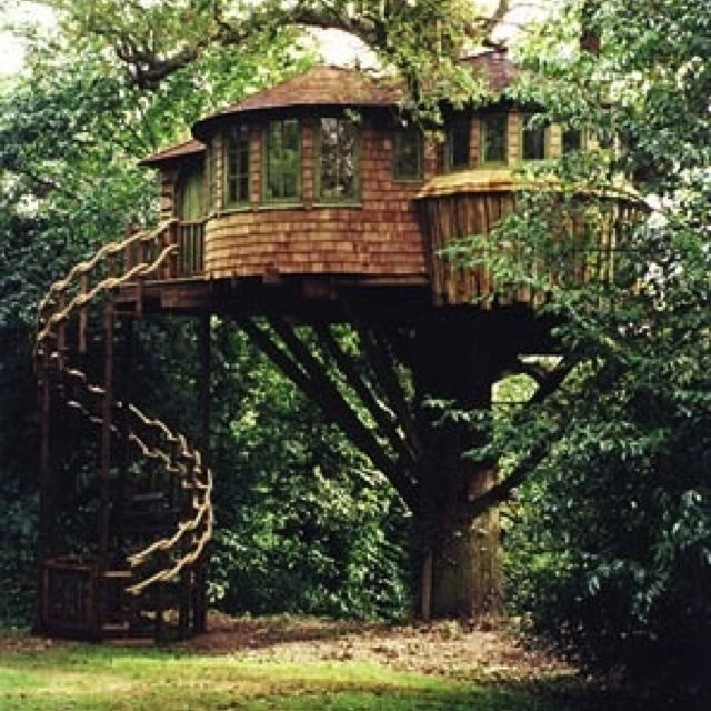 Extreme Treehouse | Houses | Pinterest | Treehouse, Tree houses and  Treehouses