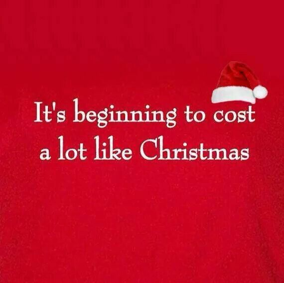 Funny Christmas Pic Quotes: 241 Best Christmas Humor Images On Pinterest