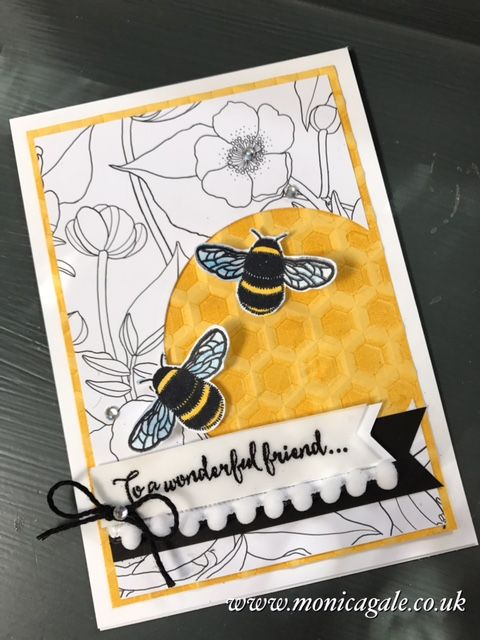 STAMPIN'UP! UK- Top UK Demonstrator Monica Gale-01405 862902-DN14 9QZ: Dragonfly Dreams to entice Spring !!