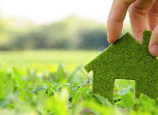 Equilibrio Ecológico: Lograr Estabilidad Ambiental entre el Hombre y la Naturaleza #medioambiente