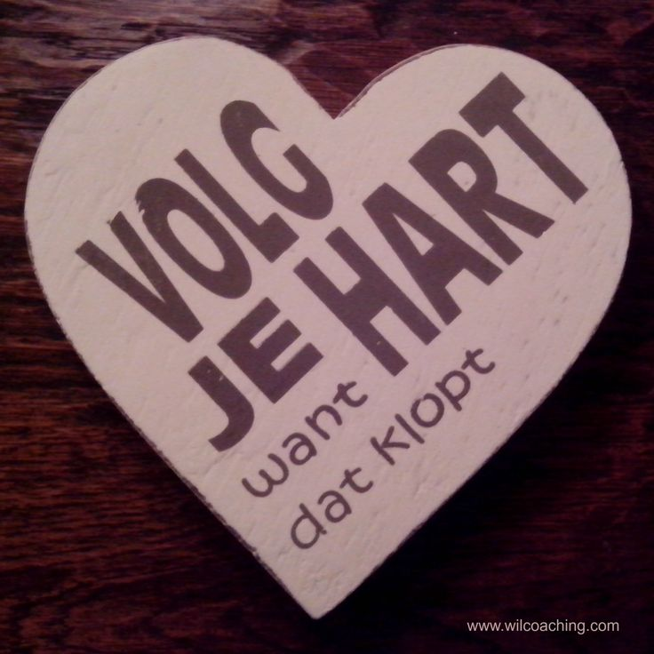 Citaten Volg Je Hart : Best images about volg je hart on pinterest your