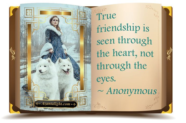 Quotes: Heart Warming Friendship