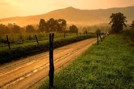 Country Roads!