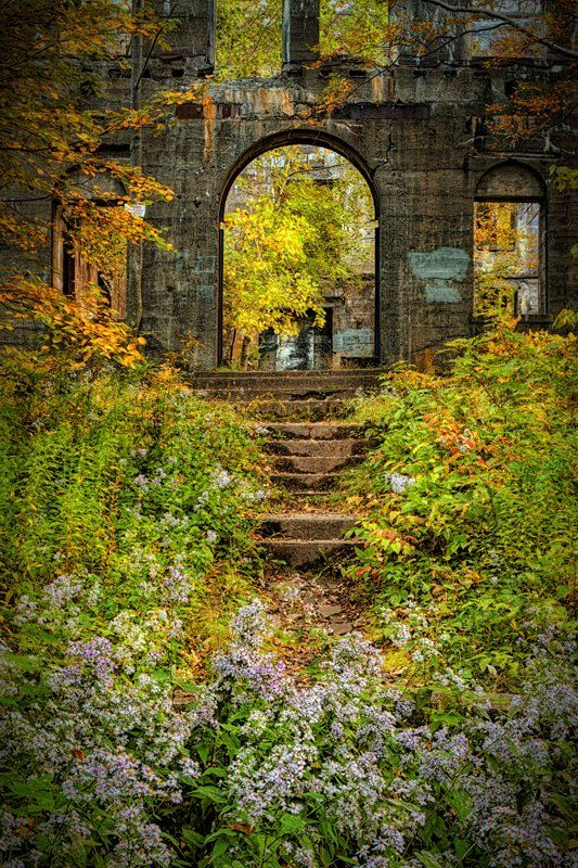 Nature takes over the ruins of an unfinished grand hotel... boarded up in 1940. Indian Head Overlook, New York ~ by Vincent James Photography