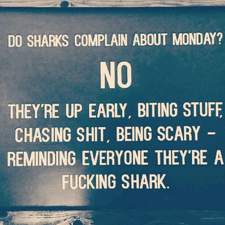 Be a shark and take a bite out of your Monday.  #beashark #interior  #house  #renovation  #dreamhouse  #fixerupper  #propertysales  #luxuryproperty  #realestateinvestor  #condolife  #realestatebroker  #sold  #selling  #beautifulhomes  #mansions  #Ilovemyjobs  #homedesign  #modernhouses  #casa  #bigresidence