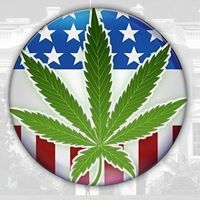 What YOU Need to Know About Medical Cannabis in Illinois https://medicalcannabisoutreachblog.wordpress.com/2017/01/12/what-you-need-to-know-about-medical-cannabis-in-illinois/?utm_campaign=crowdfire&utm_content=crowdfire&utm_medium=social&utm_source=pinterest