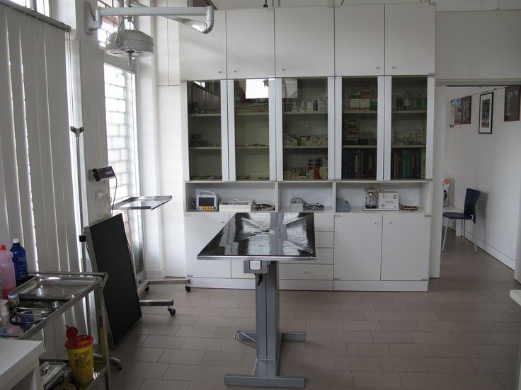 Ambulatorio Veterinario Dott. Franco Colnago ha scelto Webee