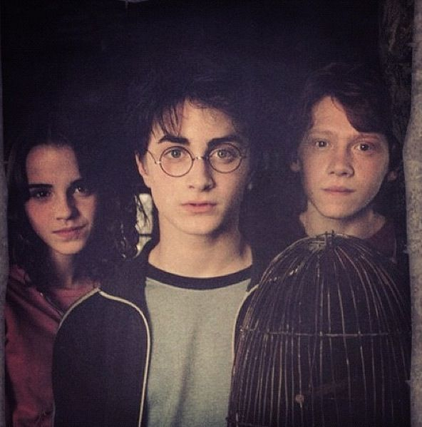 Harry potter hermione granger and ron weasley harry - Harry potter hermione granger ron weasley ...