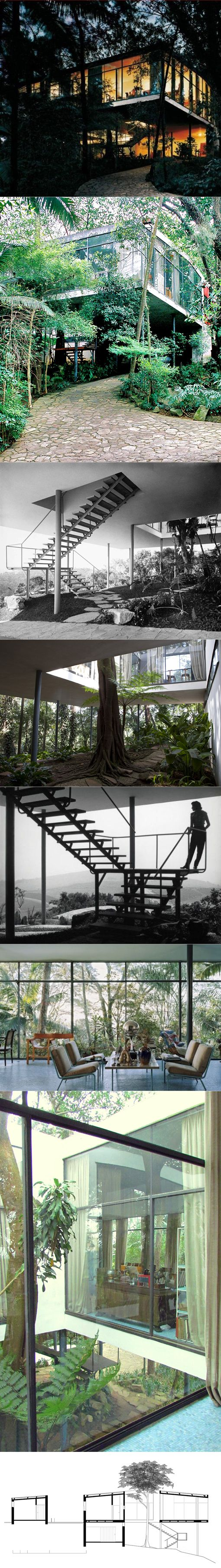 1951 Lina Bo Bardi - Casa de Vidro / São Paulo Brazil / concrete steel glass / Glass House