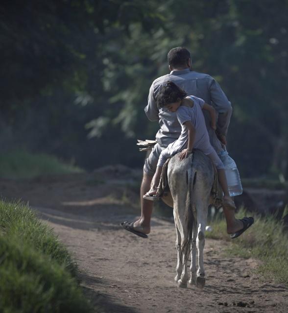 "An Egyptian farmer and his daughter ride a donkey at Gazeerat al-Dahab, ""The island of Gold,"" Cairo, Egypt. (Khalil Hamra/Associated Press)"
