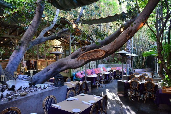 Cliff's Edge Restaurant in Los Angeles may be one of Southern California's best kept secrets.
