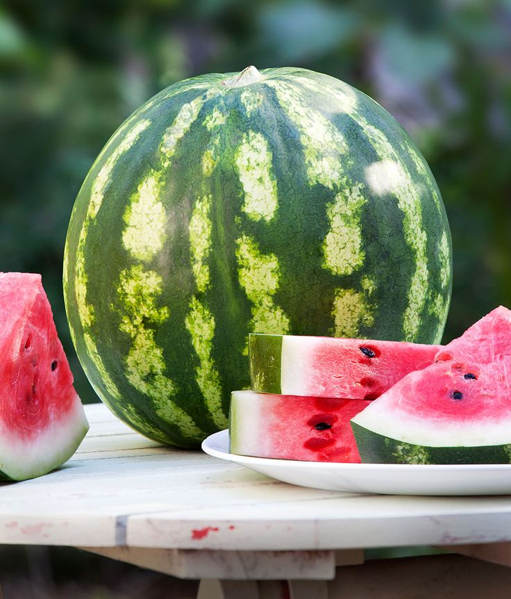 How to fuck a watermelon pics 87