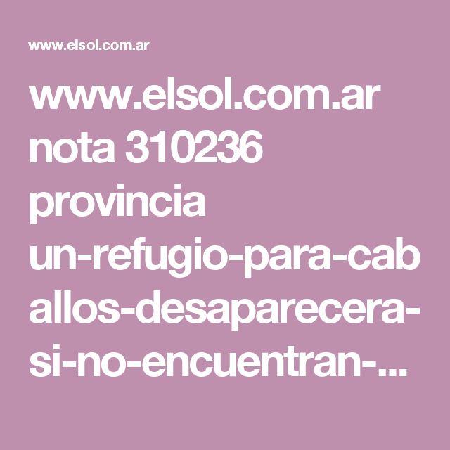 www.elsol.com.ar nota 310236 provincia un-refugio-para-caballos-desaparecera-si-no-encuentran-nuevo-predio.html