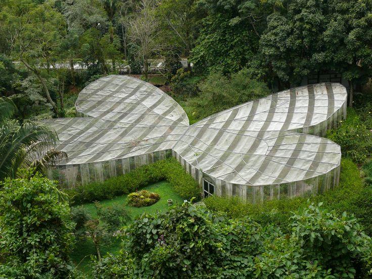 Mariposario en el Jardin Botanico del Quindio - Calarca - Colombia