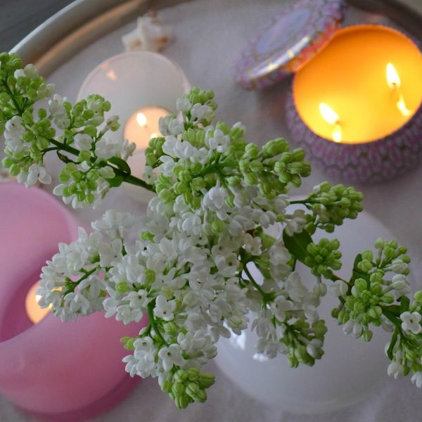 Voluspa candels lilac interior