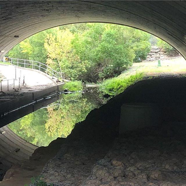 The starting point for todays bush walk is a tunnel underneath a major motorway. I love Sydneys hidden gems  #saturdaymorning #bushwalk #authorsofinstagram