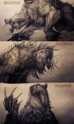 Bears. WIP by MattBarley 12 codex dire bear monster beast creature animal | Create your own roleplaying game material w/ RPG Bard: www.rpgbard.com | Writing inspiration for Dungeons and Dragons DND D&D Pathfinder PFRPG Warhammer 40k Star Wars Shadowrun Call of Cthulhu Lord of the Rings LoTR + d20 fantasy science fiction scifi horror design | Not Trusty Sword art: click artwork for source