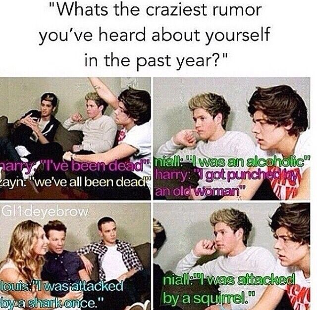 I Have No Direction In Life Quotes: 25+ Best Ideas About One Direction Humor On Pinterest