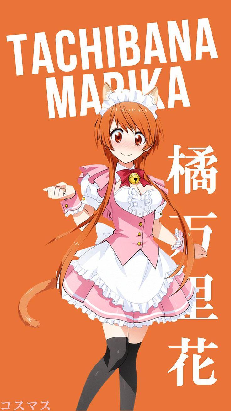 Tachibana Marika ~ Korigengi | Wallpaper Anime