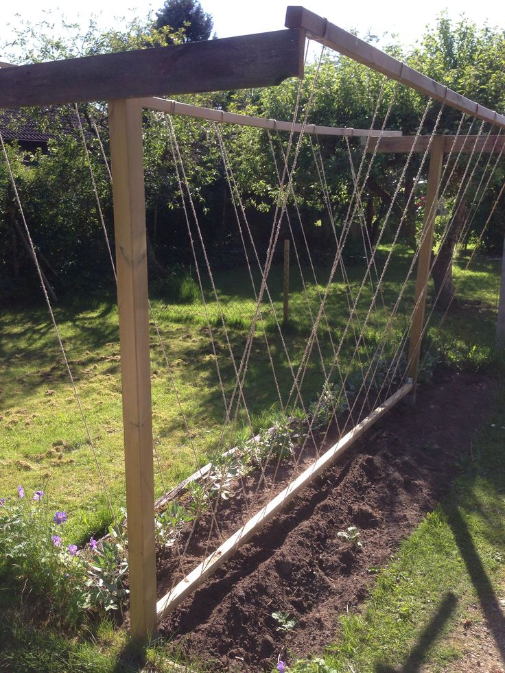 Simple Raised Vegetable Garden