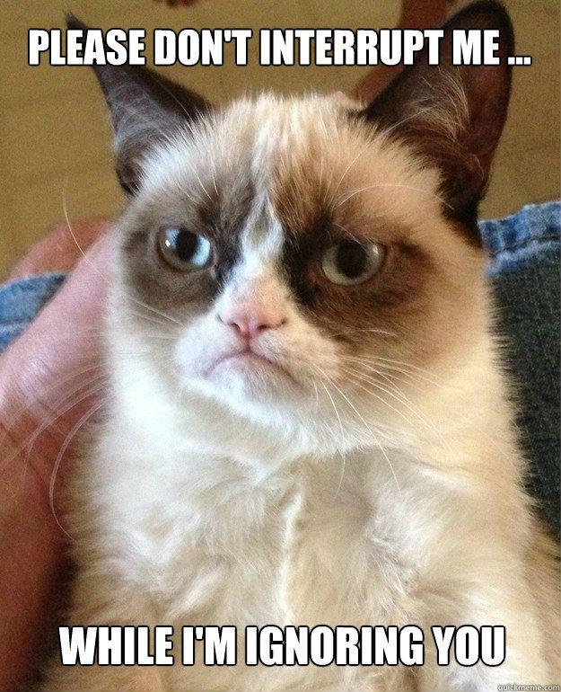 Please don't interrupt me  - Grumpy Cat