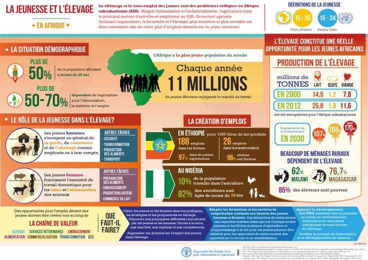 La jeunesse et l'élevage en Afrique