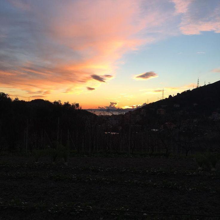 Si cammina. L'odore acro del fumo ci fa compagnia mentre il cielo si trasforma dipingendosi di rosso. È ancora giorno a metà. È già notte a metà. #fb #sunset #skyline #nofilterneeded #nofilterneeded #genovagando #genovaè #tramontiitaliani #cielrose #igers_sky #igers_sunset #sunsetgram #skygraphy
