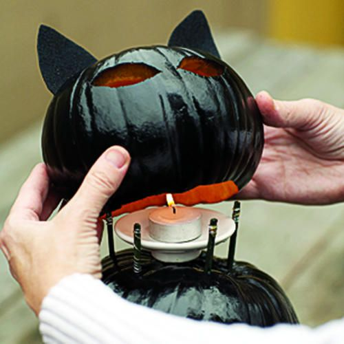 Very cool. Black cat pumpkin How-toHoliday, Ideas, Diy Black, Pumpkin Cat, Black Cats, Cat O' Lanterns, Cat Jack O' Lanterns, Black Cat Pumpkin, Halloween