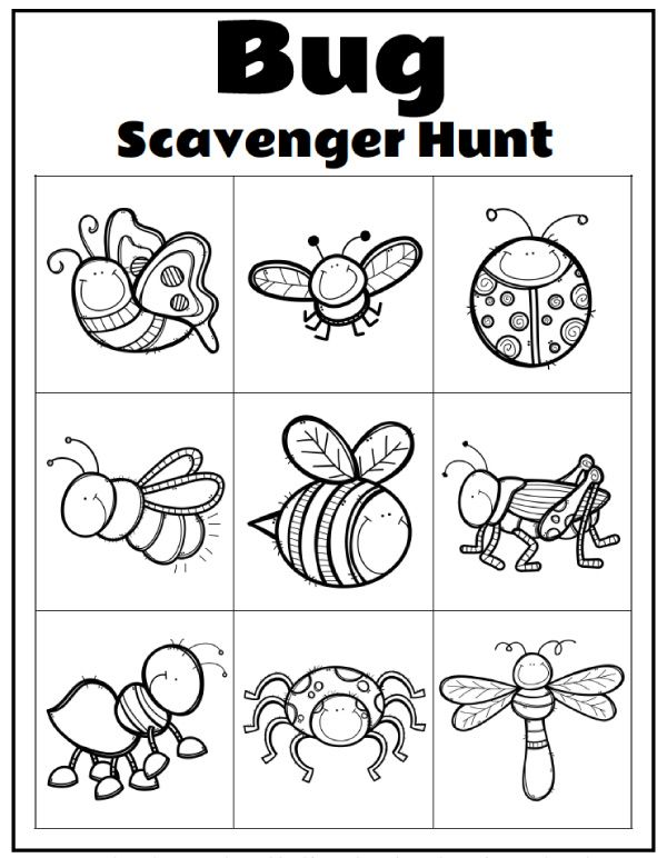 Printable Preschool Bug Activities For Learning Fun Bugs