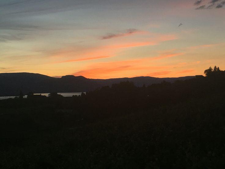 Sun setting on Hillside Winery, Penticton