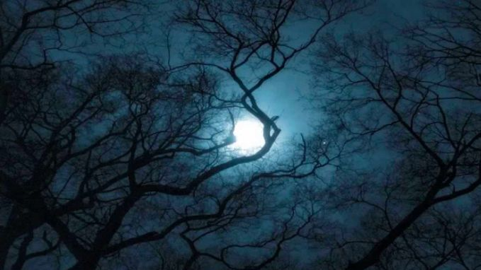 """A New Paranormal Encounter: """"I don't normally talk about this... But I had a paranormal experience! It was caught on..."""""""