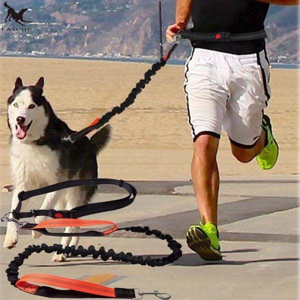 1eefcb086e3 Dogs Leash Running Elasticity Hand | Dogs Collars | Dog harness, Dog ...