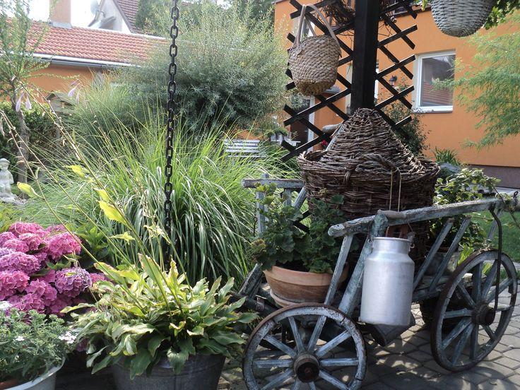 Zahrada v červenci 2016