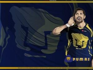 Equipo Pumas