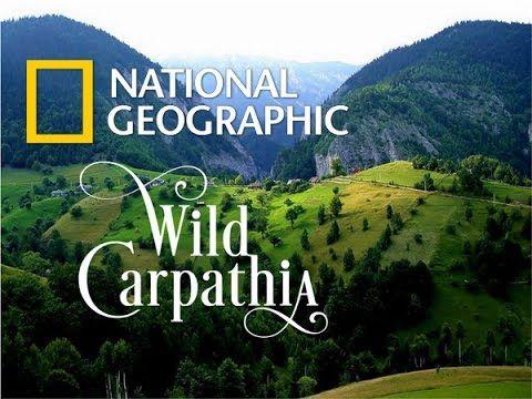 Discovering Romania-Wild Carpathia (Mountains of Transylvania) [FULL HD] - YouTube
