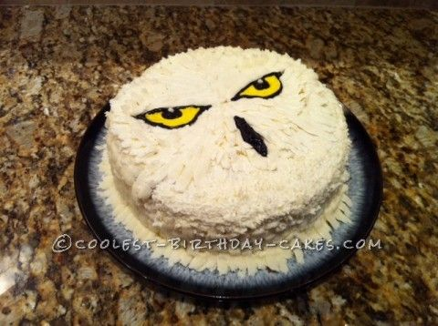 This Hedwig cake was made for our son's 9th birthday party, on a Harry Potter theme.  It was a small party, for only five kids including the birthday...